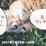 2017年7月24~30日 モバイルWi-Fiルーターランキング SoftBankAir強し!