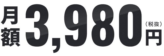 地球WiFiの国内月額利用料