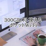 月300GB使えるポケットWi-Fi