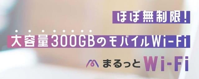 まるっとWi-Fiの300GB表記